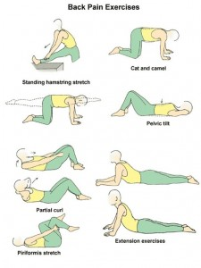 back-pain-stretches