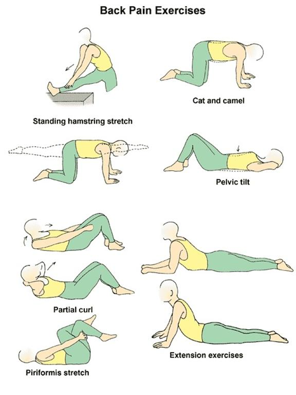 Back pain stretches on Pinterest | Lower Backs, Back Pain ...
