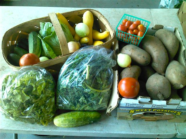 farmers-markets-cheap-vegetables
