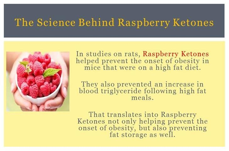 raspberry-ketones-reviews