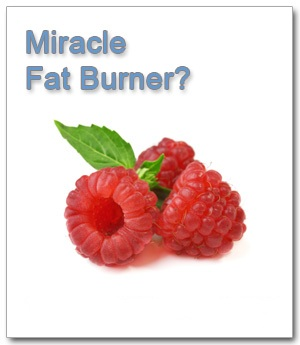 raspberry-ketones-doctor-oz-fat-buster